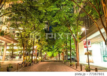 《東京都》丸の内オフィス街の夜景・初夏 77367601