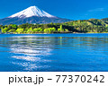 《山梨県》初夏の富士山・河口湖湖畔の眺め 77370242