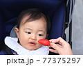 いちご狩りを体験しているベビーカーに乗った赤ちゃん 77375297