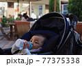 粉ミルクを飲むベビーカーに乗っている赤ちゃん 77375338