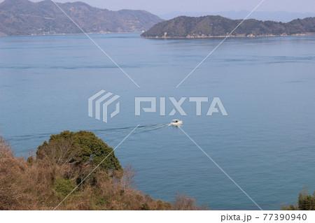 静かな海原を一隻のモーターボートが滑走している 77390940