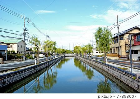 水戸市内を流れる水戸八景のひとつ、備前堀 77393007