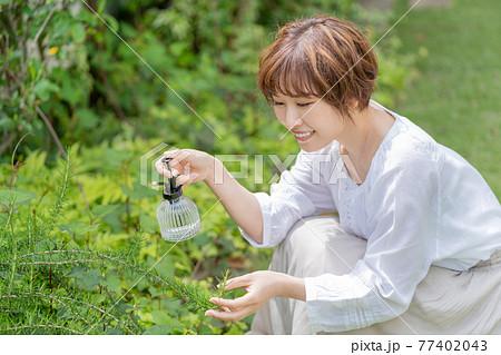 庭で植物の手入れをする若い女性 ガーデニング 77402043
