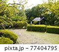 神奈川県立七沢森林公園 おおやま広場 77404795