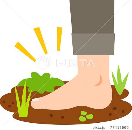 裸足で地面に立つ足 77412696