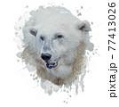 Digital Painting of Polar Bear 77413026