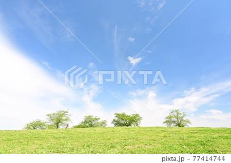 青空を背景にした、緑色の丘の写真 77414744