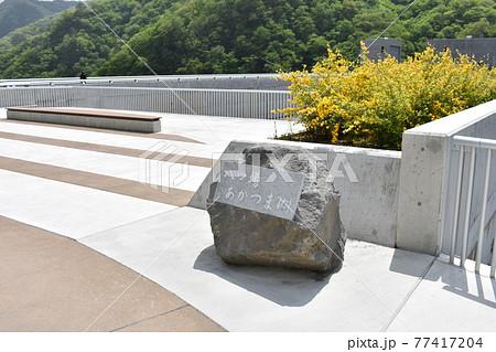 群馬 八ッ場ダムの風景 5月初夏 77417204