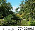 晩夏の京都等持院風景 77422098