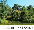 晩夏の京都等持院風景 77422101