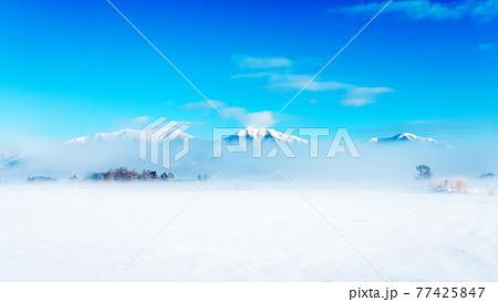 蒜山高原の雪景色 77425847