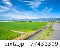 爽やかな春の農村風景 77431309