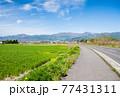 爽やかな春の農村風景 77431311