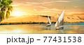 Sun in Aswan 77431538