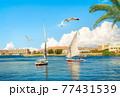 Summer day in Aswan 77431539
