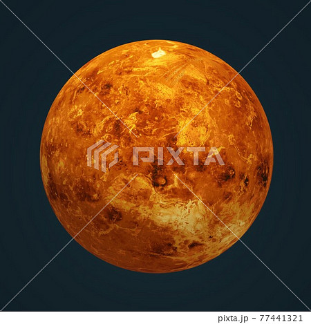 金星 77441321