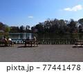 善福寺公園 77441478