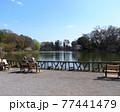 善福寺公園 77441479