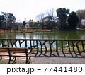 善福寺公園 77441480