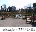 善福寺公園 77441481
