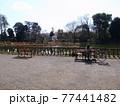 善福寺公園 77441482