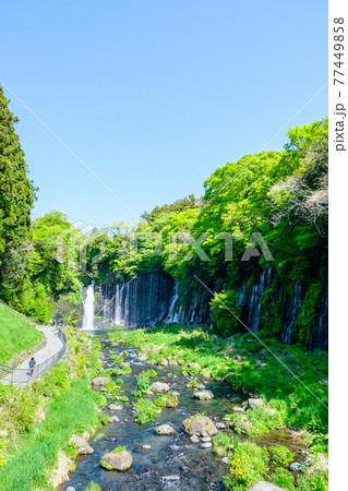 白糸の滝(富士宮) 77449858