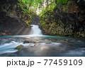 夏の乗鞍高原の千間淵 【長野県】 77459109