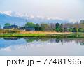 初夏の安曇野市の水田と水鏡 【長野県】 77481966