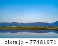 初夏の安曇野市の水田と水鏡 【長野県】 77481971