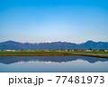 初夏の安曇野市の水田と水鏡 【長野県】 77481973