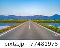 初夏の安曇野市の水田と水鏡 【長野県】 77481975