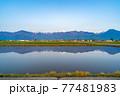 初夏の安曇野市の水田と水鏡 【長野県】 77481983