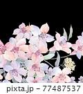 Beautiful elegant watercolor rose flower 77487537