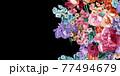 Beautiful elegant watercolor rose flower 77494679