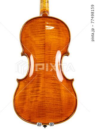 バイオリン 背面部 77498159