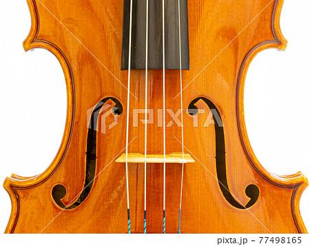 バイオリン 表板クローズアップ 77498165