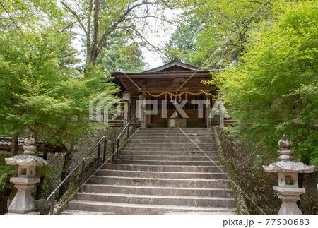 岡山県美作市の名瀑 琴弾の滝の滝の宮神社 77500683