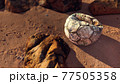 Old leather soccer ball abandoned on sand 77505358