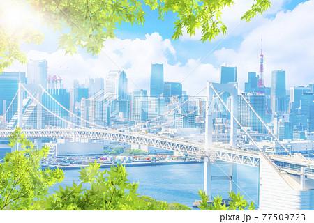 晴れた東京都市風景 77509723