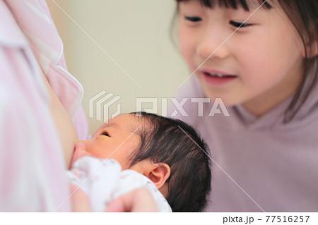 新生児に授乳するママをみる姉 77516257