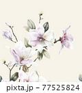 Beautiful elegant watercolor magnolia flower 77525824