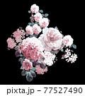 Beautiful elegant watercolor rose flower 77527490