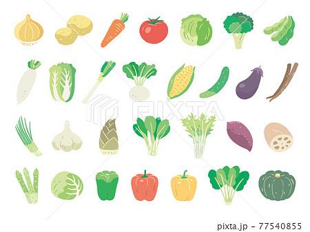 食べ物_食材_野菜_線無し_セット 77540855