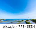京都 袖志の棚田  77546534