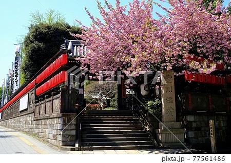 豊川稲荷東京別院・山門 77561486