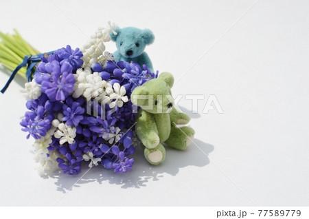 白色と紫色のムスカリの花とテディベア 77589779