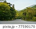 伊勢神宮の神秘的な風景 77590170