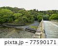 伊勢神宮の神秘的な風景 77590171