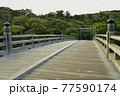 伊勢神宮の神秘的な風景 77590174