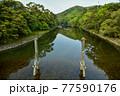 伊勢神宮の神秘的な風景 77590176